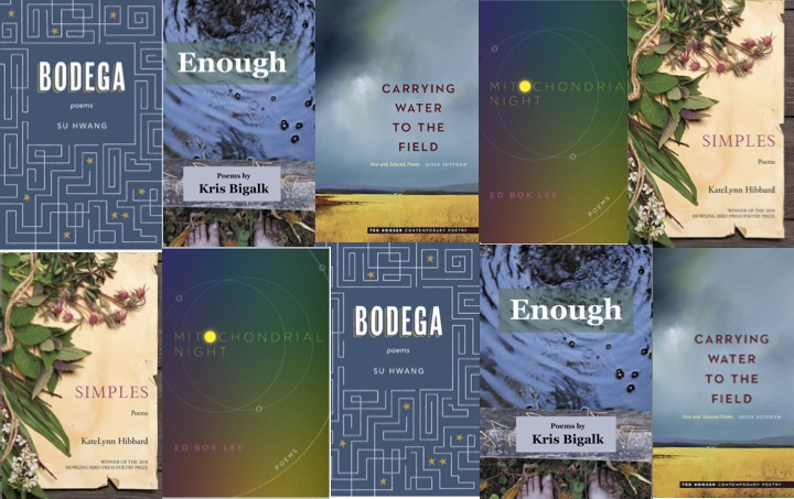 "The 5 finalist books for ""Read Poetry Central Minnesota 2020"""