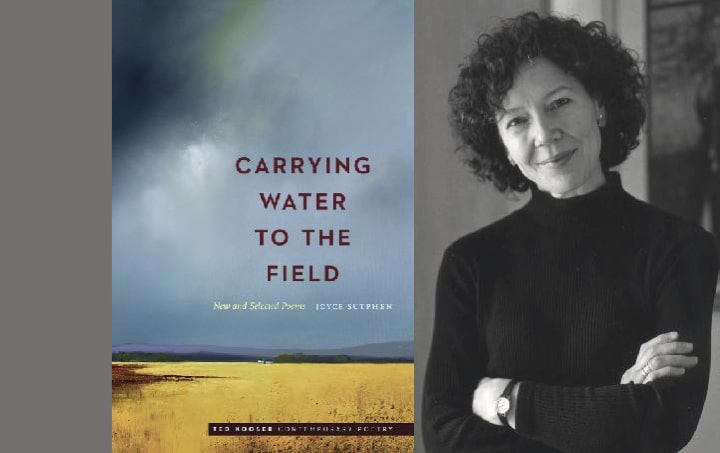 7 ways to read Joyce Sutphen's Carrying Water to the Field: New and Selected Poems
